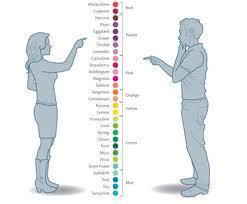 Цвета женские и мужские